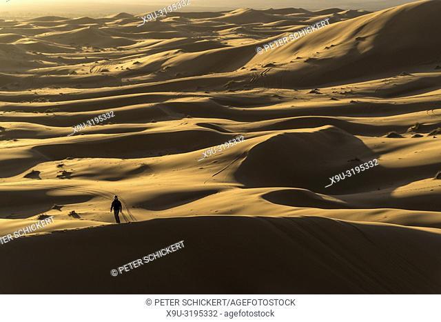 boy in the Sahara desert near Merzouga, Kingdom of Morocco, Africa