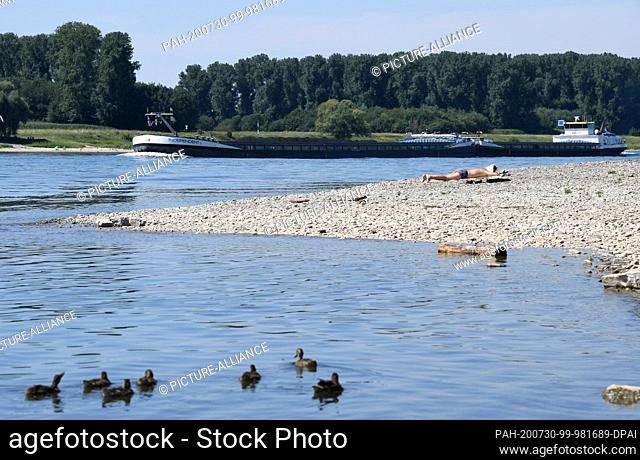 30 July 2020, North Rhine-Westphalia, Hitdorf: A man basks on the banks of the Rhine while a cargo ship passes him up the Rhine