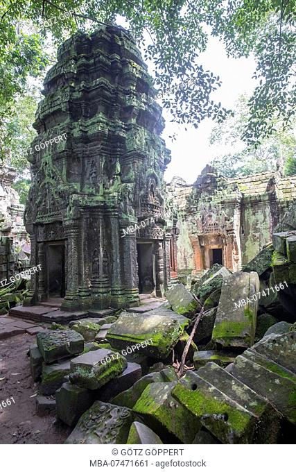 Siem Reap, Angkor, Temple Tha Prom, Temple of nature overgrown in the middle of the jungle