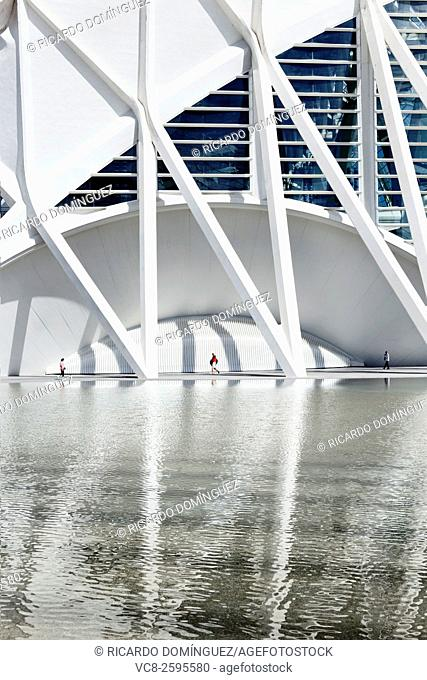 Museum of Sciences Prince Philip, made by Santiago Calatrava, and its reflection. Valencia, Spain