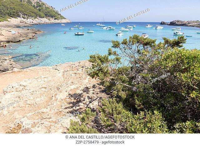 Coast in Majorca island Balearic islands on August 2016 in Spain. Molto beach