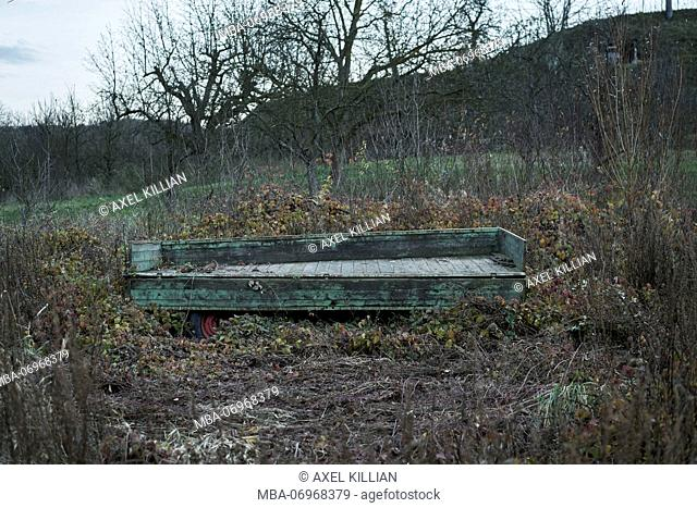 old trailer with open load bed on a orchard with old trees