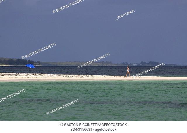 Woman in the beach, Twin Cove Beach, Eleuthera island, Bahamas