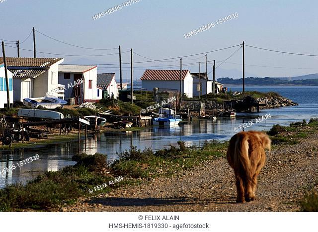 France, Aude, Gruissan, Ayrolle, cabin fishermen