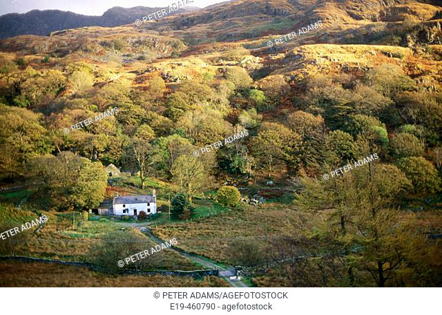 Lone cottage in Snowdonia National Park. Wales, UK