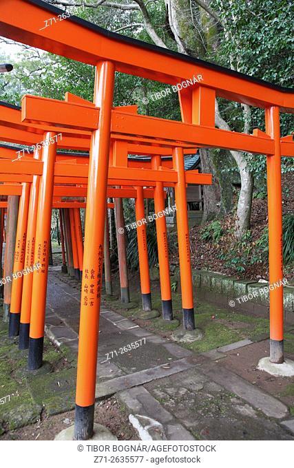 Japan, Nagasaki, Suwa Shrine, torii gates,
