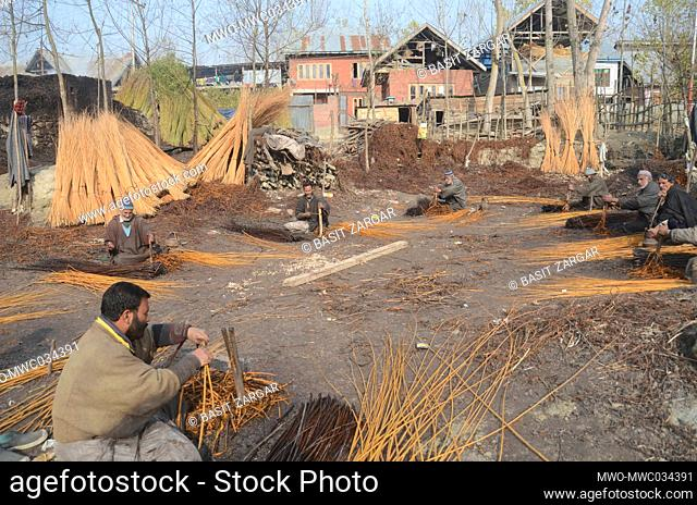 Villagers peel the cover off wicker sticks in Ganderbal. Wicker is used for making traditional firepots called Kangri in Kashmir