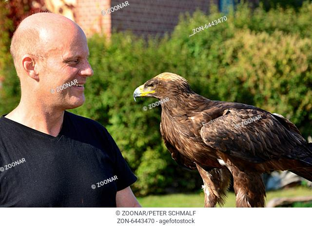 Falconry visitor with steppe eagle on his hand