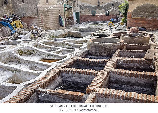 Man tanning skin, tannery, medina, UNESCO World Heritage Site, Tetouan, Morocco
