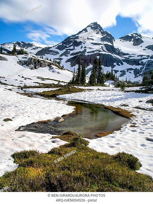 A creek formed from snow melt runs out from beneath a snow field as Locomotive Mountain can be seen towering above. This is a popular area for backpacking due...