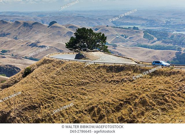 New Zealand, North Island, Hawkes Bay, Havelock North, Te Mata Peak, road to the summit