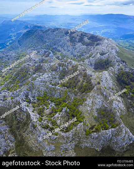 HOYAS o DOLINAS, Beech forest, Springtime, Astrana, Sierra de Hornijo, Alto Ason, Soba Valley, Cantabria, Spain, Europe