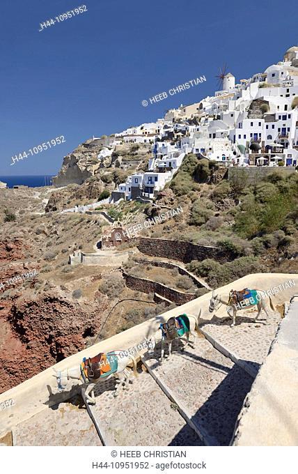 Europe, Aegean, Cyclades, Greece, Santorini, Thira, Island, Greek, Oia, mule, trail, steps, transportation, destination, travel