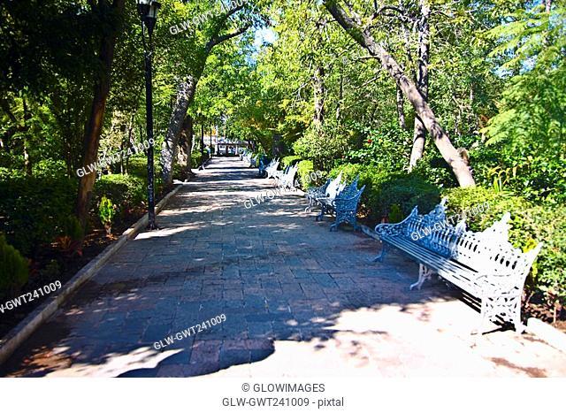 Empty benches in a park, Jardin De San Marcos, Aguascalientes, Mexico