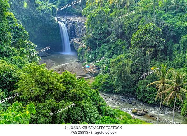 Terjun Blangsinga Waterfall, Ubud, Bali, Indonesia, Asia