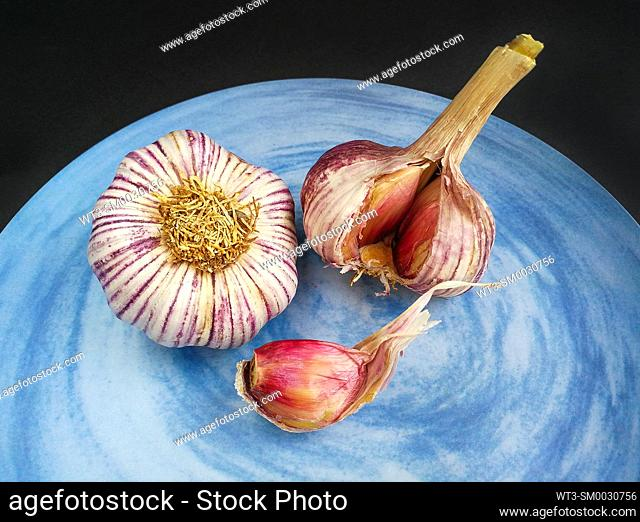 Two purple heads of garlic on a blue plate