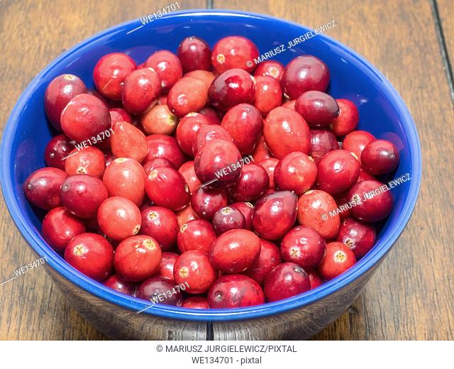 Bowl of fresh organic cranberries on wooden table