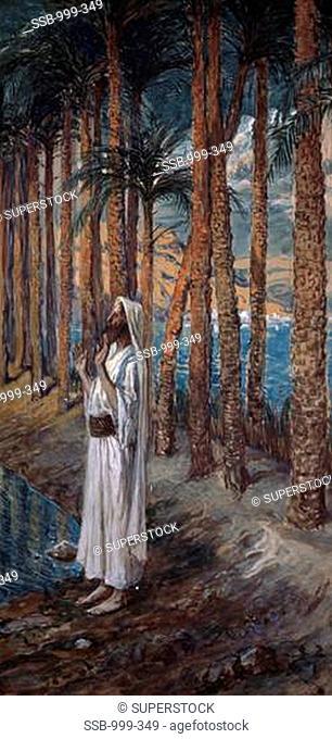 The Palm Tree James Tissot 1836-1902 French Jewish Museum, New York City