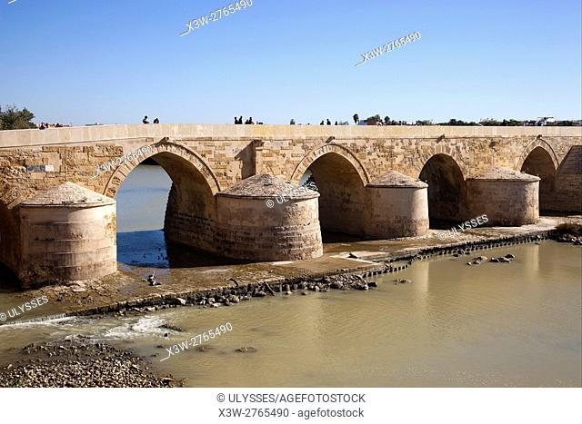 Roman Bridge, Cordoba, Andalucia, Spain, Europe