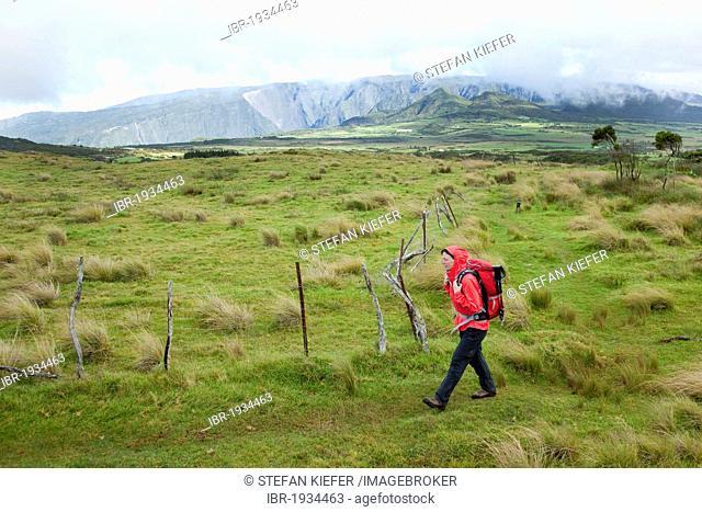 Hiker on the plateau Plaine des Cafres at Bourg-Murat, La Reunion island, Indian Ocean