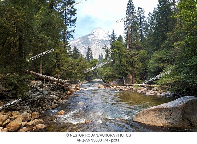 Scenic landscape with view of river in forest in Yosemite National Park, California, USA