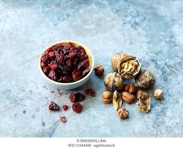 Walnuts, hazelnuts and dried cranberries