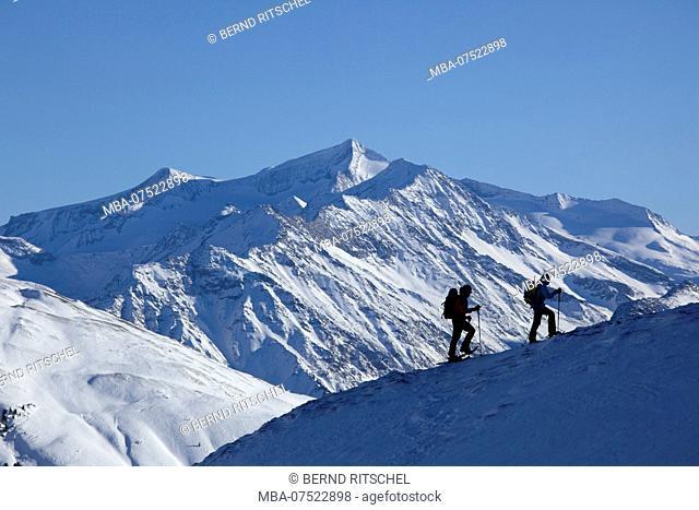 Snowshoe tour to Dristkopf Mountain, Kitzbühel Alps, Tyrol, Austria