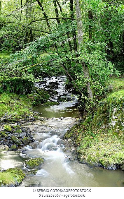 river in Artikutza