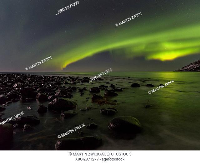 Northern Lights over Unstad Beach , island Vestvagoy. The Lofoten islands in northern Norway during winter. Europe, Scandinavia, Norway, February