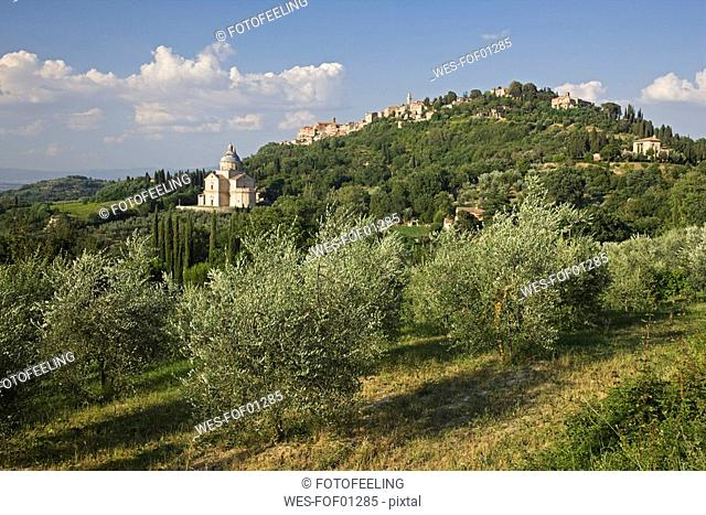 Italy, Tuscany, Sanctuary of the Madonna di San Biagio, Montepulciano in background