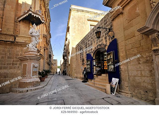 Typical street of the town of Mdina, Malta, Europe, november 2009