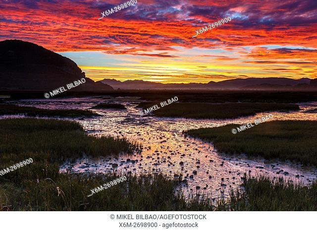 Daybrake in the marshes. Escalante. Marismas de Santoña, Victoria y Joyel Natural Park. Cantabria, Spain, Europe