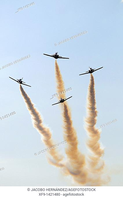 Patrulla Águila. Spanish Air Force Aerobatic Team