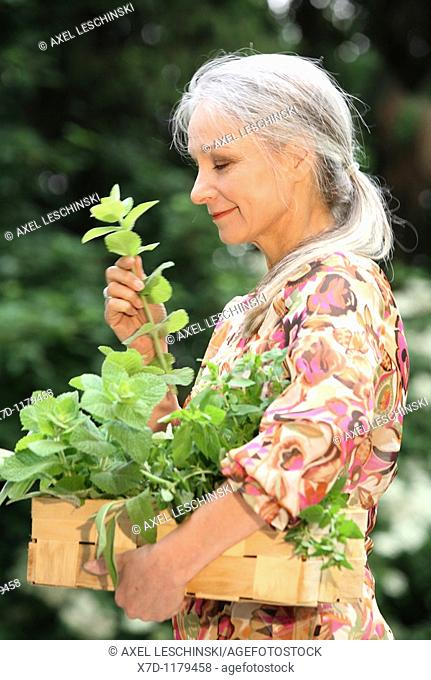 older woman picking fresh herbs