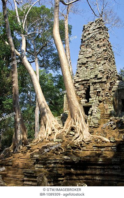 Ruins of the Preah Palilay temple overgrown with roots and trees, Angkor Thom, UNESCO World Heritage Site, Siem Reap, Cambodia