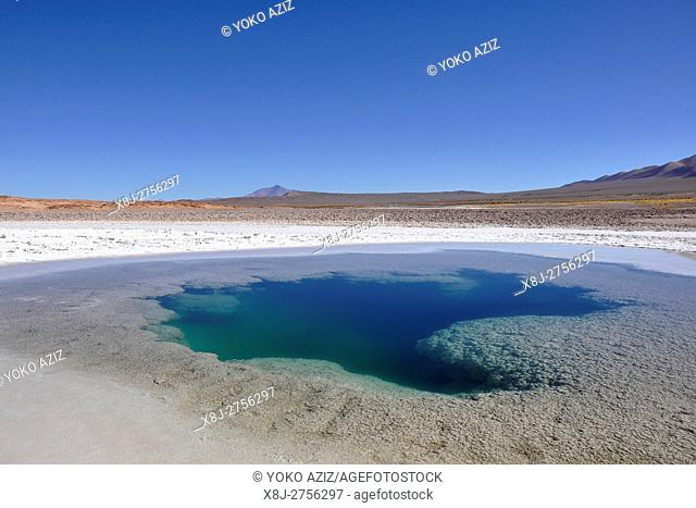 Argentina, Salta region, Tolar Grande Ojos del Mar