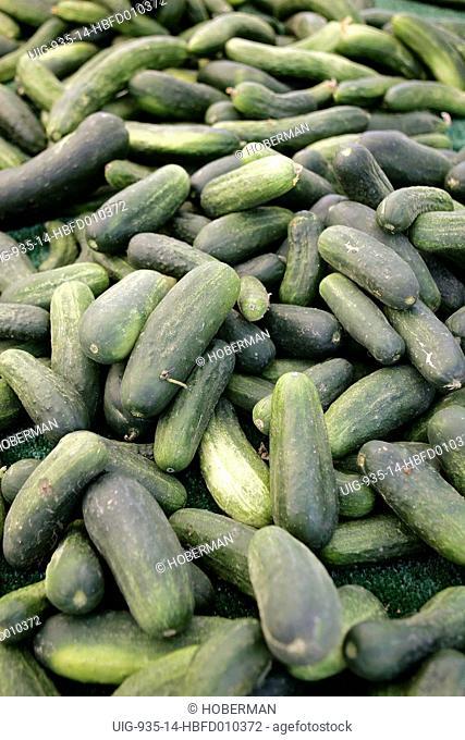 Zucchini at Farmers Market, Napa Valley, California, USA