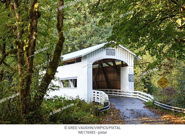 Wildcat Bridge, also known as the Austa Bridge, on Wildcat Creek at the Siuslaw River; Coast Range Mountains, Oregon