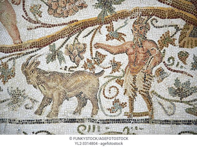 Detail of a Roman mosaics design depicting Silenus and Cupids showing Pan and a goat, from the House of Sienus, ancient Roman city of Thysdrus