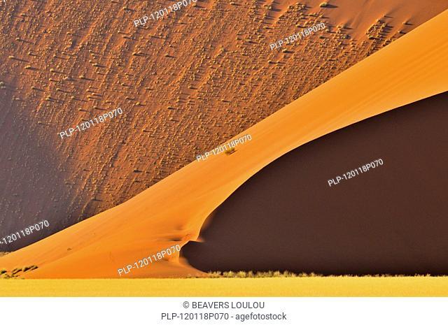 Red sand dunes of the Sossusvlei / Sossus Vlei in the Namib desert, Namibia