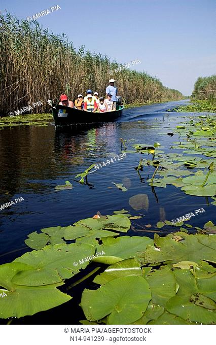 Rumania Delta del Danubio. El delta del Danubio es una zona muy importante desde el punto de vista ecológico; ya que constituye un extenso humedal utilizado por...