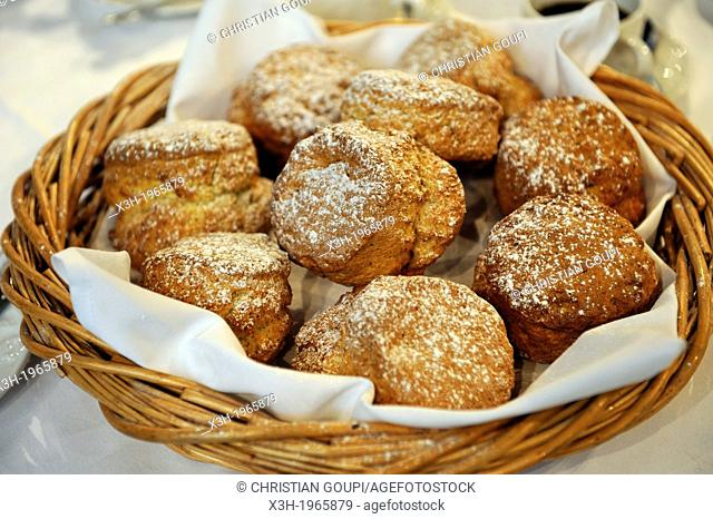 scones commonly eaten in a cream tea, Bedford hotel, Plymouth, Devon county, England, United Kingdom, Europe