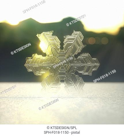 Snowflake, illustration