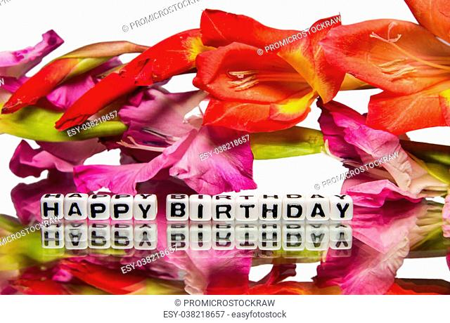 Happy birthday with pink and red flowers on white background