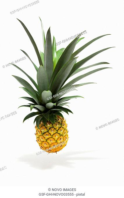 Suspended Pineapple with Shadow on White Background