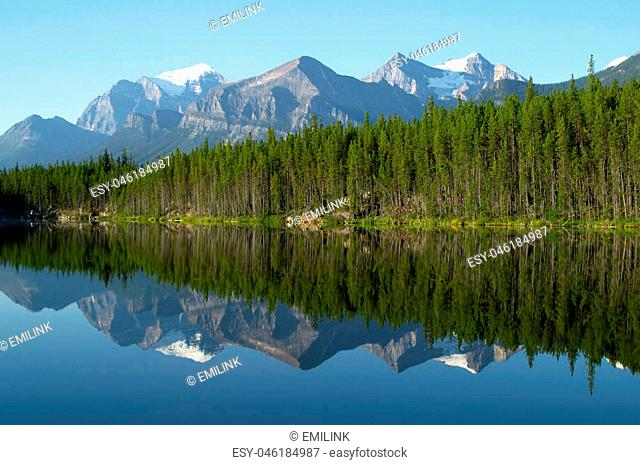Mountain and forest Reflection in Mirror Lake. Herbert Lake, Rocky Mountains, Canada