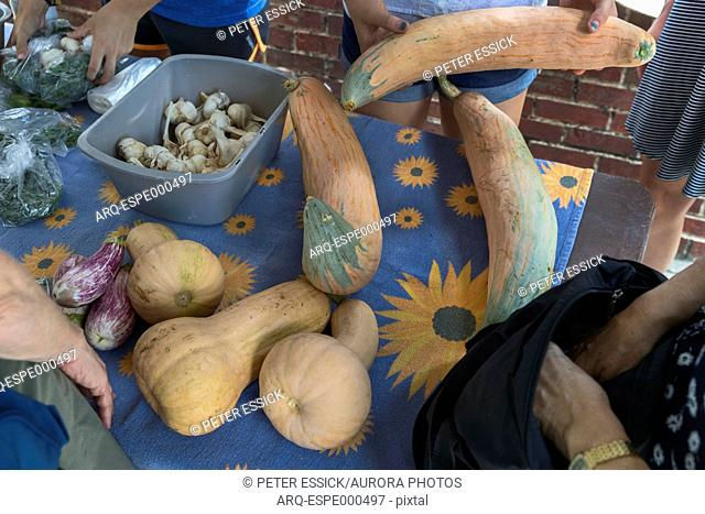 Small Farmers Market at the Paideia School. Atlanta, GA. Students are buying produce grown on the schools two urban agriculture farmlets