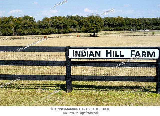 Horse farming area of Ocala, Florida. USA