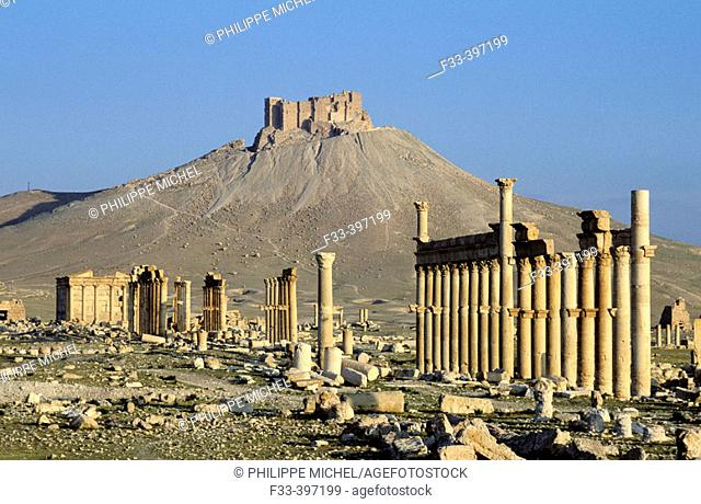 Colonnade and arab castle. Palmyra. Syria