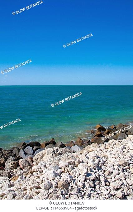 Rocks on the beach, Key West, Florida, USA